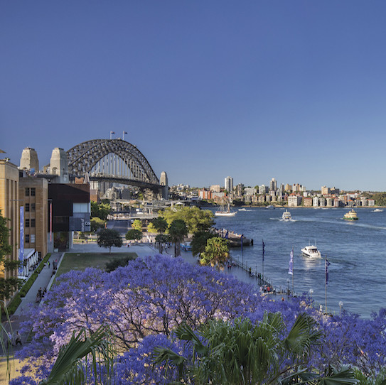 Sydney City Sights 5