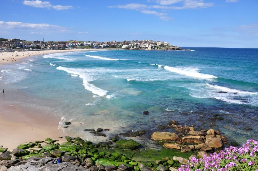 Top 10 Things to See in Sydney - Bondi beach